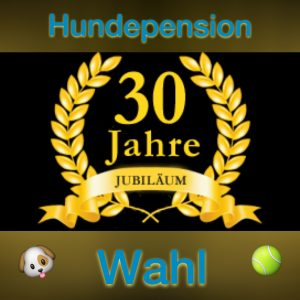 Hundepension saar